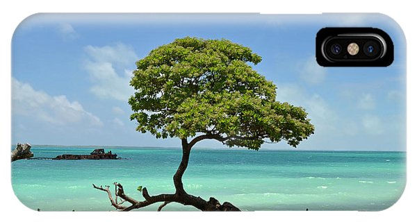 Fanning Tree On Beach IPhone Case