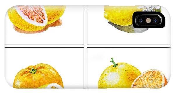 Grapefruit iPhone Case - Farmers Market Gifts Vitamin C by Irina Sztukowski