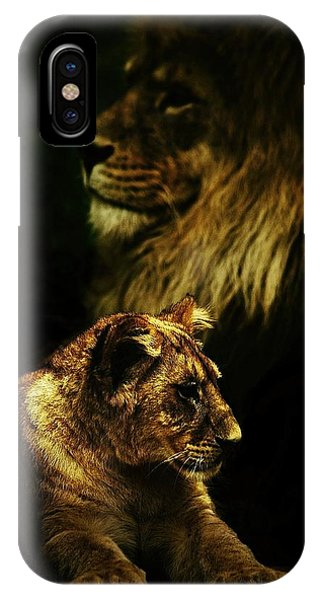 Father And Son Phone Case by Catalin Buzlea