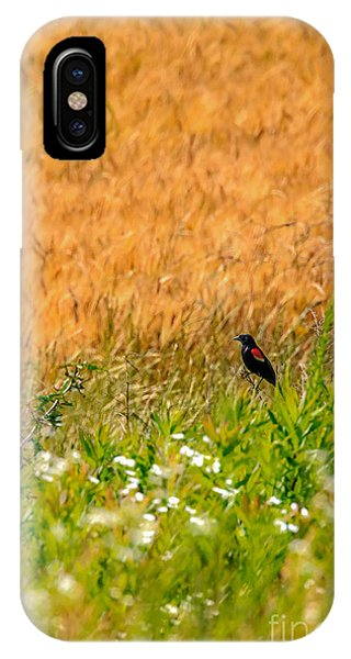 Feast IPhone Case