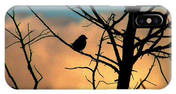 Feathered Silhouette IPhone Case