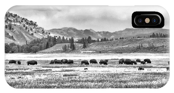 Feeding Bison And Scenic View  IPhone Case