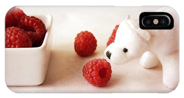 Feeding The Polar Bear Iv IPhone Case