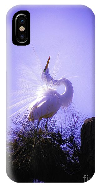 IPhone Case featuring the photograph Feeling Pretty by Ola Allen