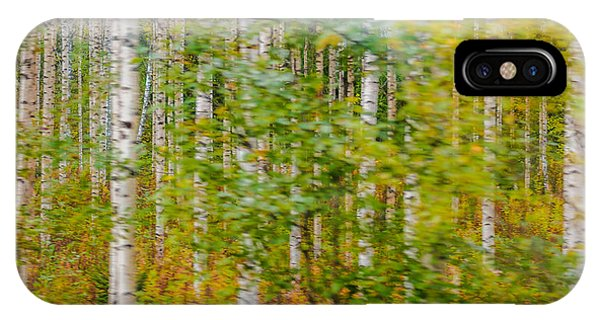 Feels Like Autumn In A Forest Of Birch Trees IPhone Case
