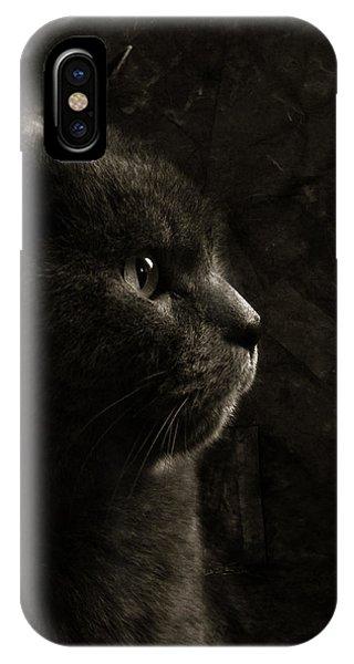 Feline Perfection IPhone Case