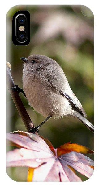 Female Bushtit IPhone Case