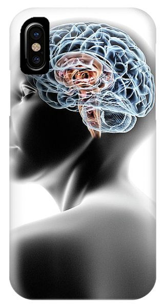 Brainstem iPhone Case - Female Human Head With Brain by Pasieka
