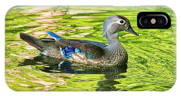 Wood Ducks iPhone Case - Female Wood Duck by Deborah Benoit