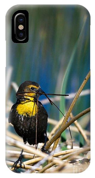 Blackbird Builds A Nest IPhone Case