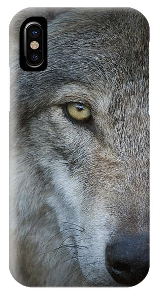 Fenris... IPhone Case