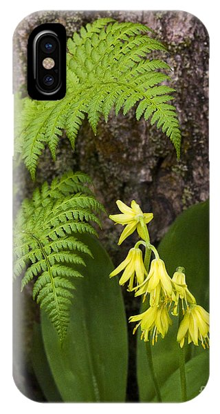 Fern And Wild Flowers IPhone Case