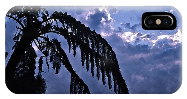 Fern At Twilight IPhone Case