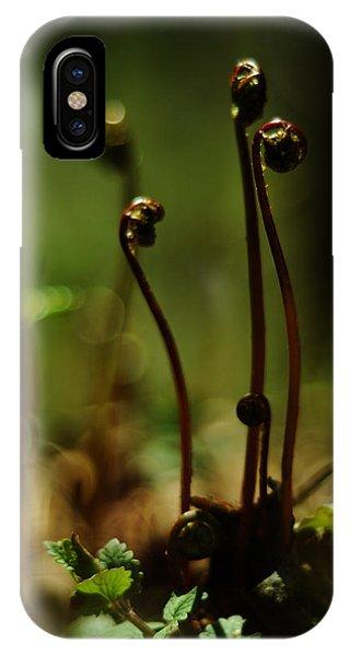 Fern Emergent IPhone Case
