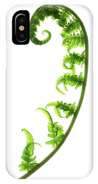 Fern Frond Phone Case by Gustoimages/science Photo Library