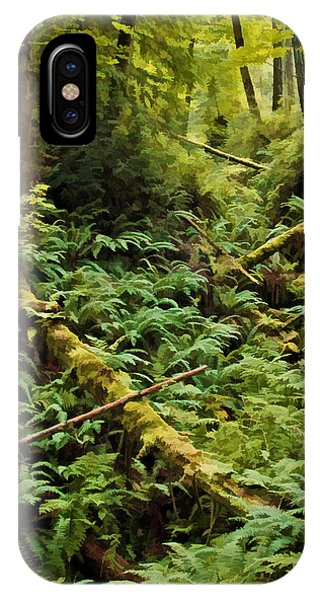 Fern Hollow IPhone Case