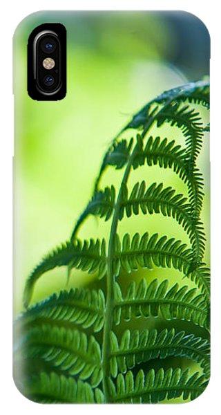Fern Leaves. Healing Art IPhone Case