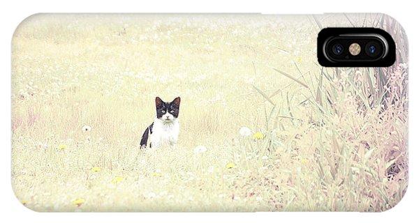Field Cat Phone Case by Kellie Prowse