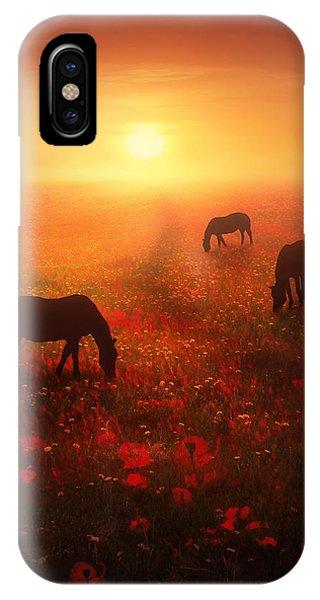 Poppies iPhone Case - Field Of Dreams by Jennifer Woodward