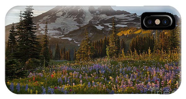 Fall Flowers iPhone Case - Field Of Dreams by Mike Reid