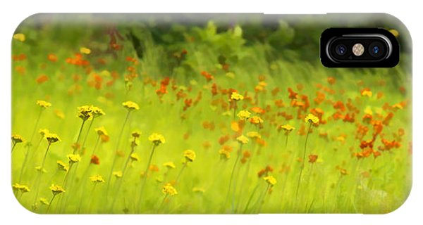 Field Of Indian Paintbrushes IPhone Case