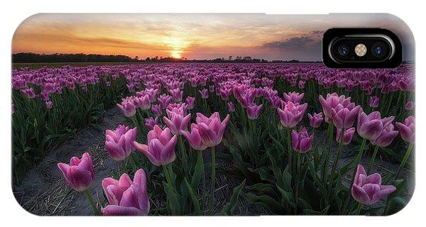 Tulip iPhone Case - Field Of Tulips by Amada Terradillos S.