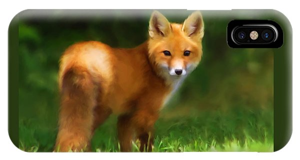 Fiery Fox IPhone Case
