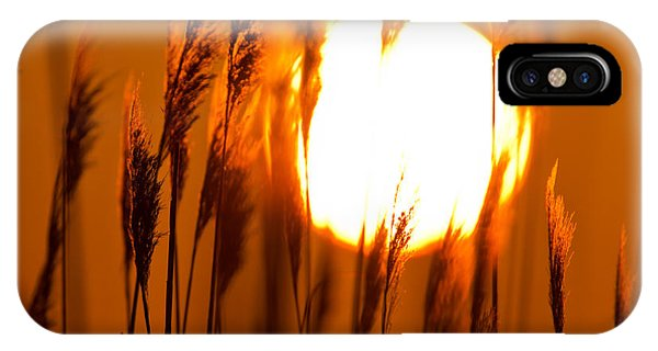 Fiery Grasses IPhone Case