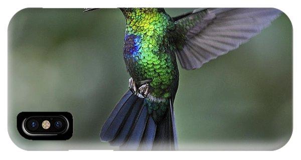 Fiery-throated Hummingbird..  IPhone Case