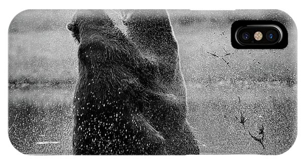 Brown Bear iPhone Case - Fight by Siv Wester