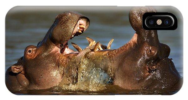 Fighting Hippo's IPhone Case