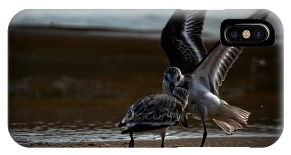 Fighting Sandpipers IPhone Case