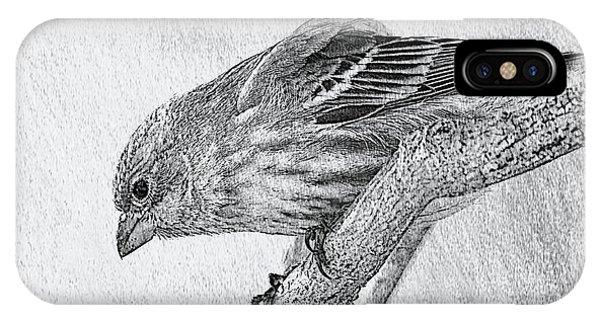 Finch Digital Sketch IPhone Case