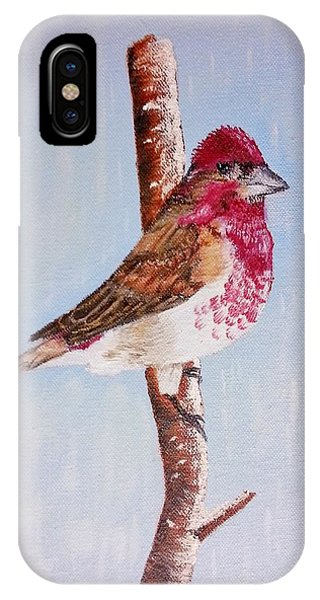 Finch IPhone Case