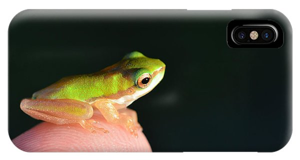 Finger Tip Baby Frog IPhone Case