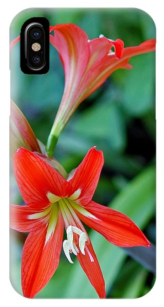 Fire Rose Phone Case by Winston D Munnings