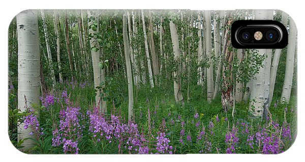 Fireweed And Aspen IPhone Case