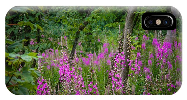 Fireweed In The Irish Countryside IPhone Case