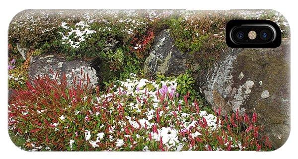 iPhone Case - First Autumn Snow by Barbara McDevitt
