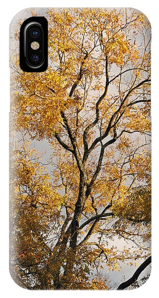 First Day Of Winter 2 IPhone Case