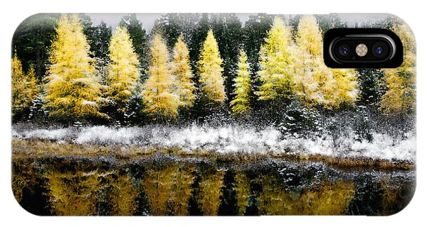 IPhone Case featuring the photograph Tamarack Under A Painted Sky by Wayne King