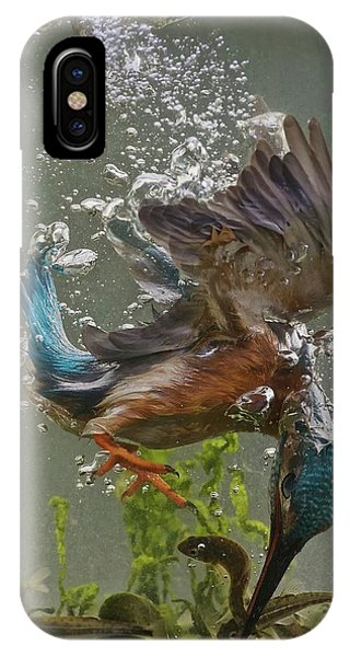 Kingfisher iPhone Case - Fisherman by Ray Cooper