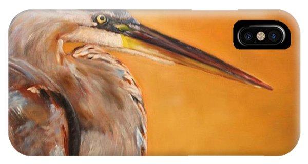iPhone Case - Fishers Gaze by Karen Langley