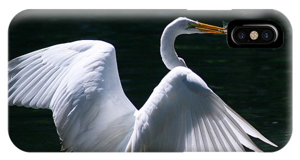 Fishing Egret IPhone Case