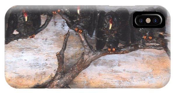 Five Vultures In Tree IPhone Case