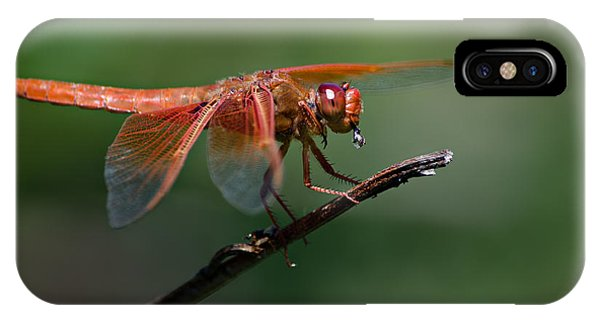 Flame Skimmer Dragonfly IPhone Case