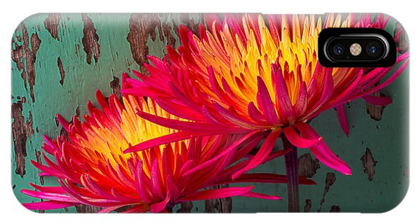 Flame Spider Mums IPhone Case