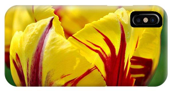 Flame Tulip IPhone Case