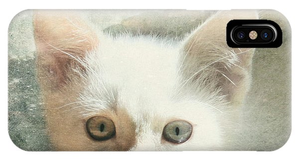 Flamepoint Siamese Kitten IPhone Case