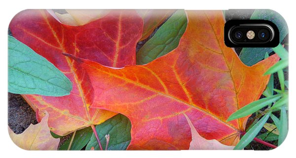 Flaming Autumn IPhone Case